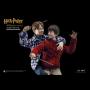 HARRY POTTER (CASUAL WEAR)